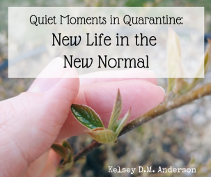 Quiet Moments in Quarantine_ New Life in the New Normal